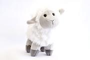 22nd Feb 2021 - Little Lamb
