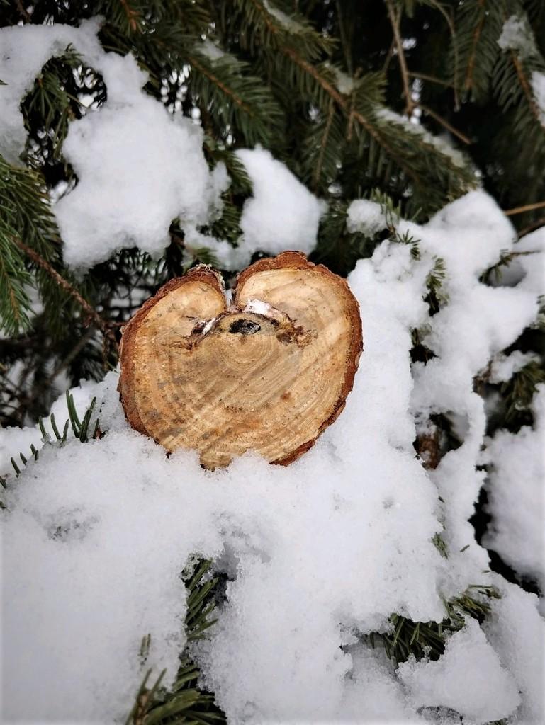 Wooden Heart  by jo38