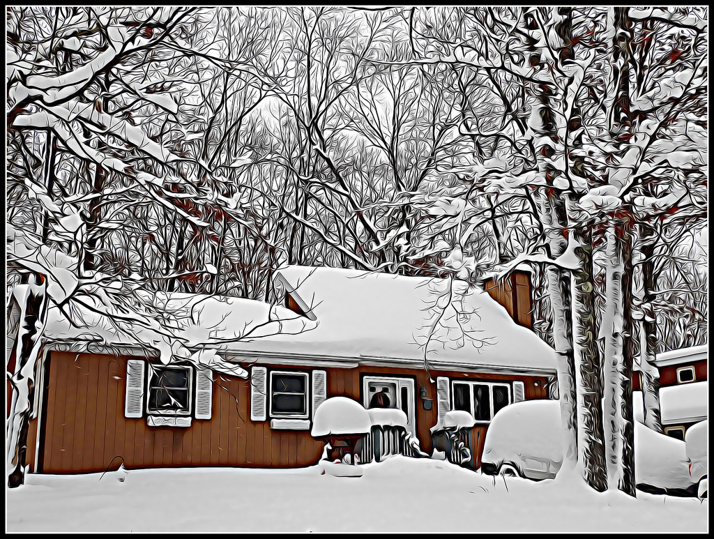 Surrounded by Snow by olivetreeann