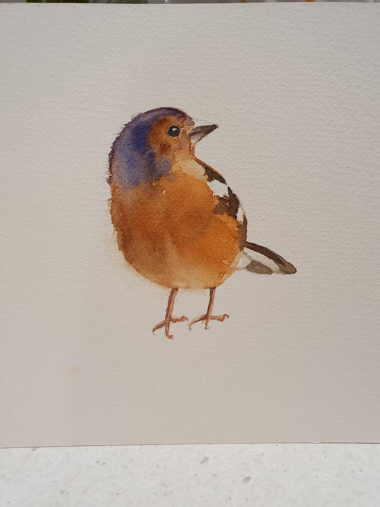 Bird by pinkpaintpot