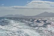 14th Feb 2021 - Schouten Island Cruise (14)