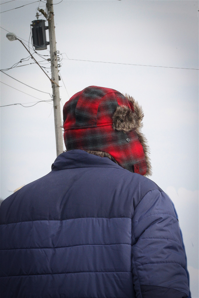 Winter Hat by ginnys