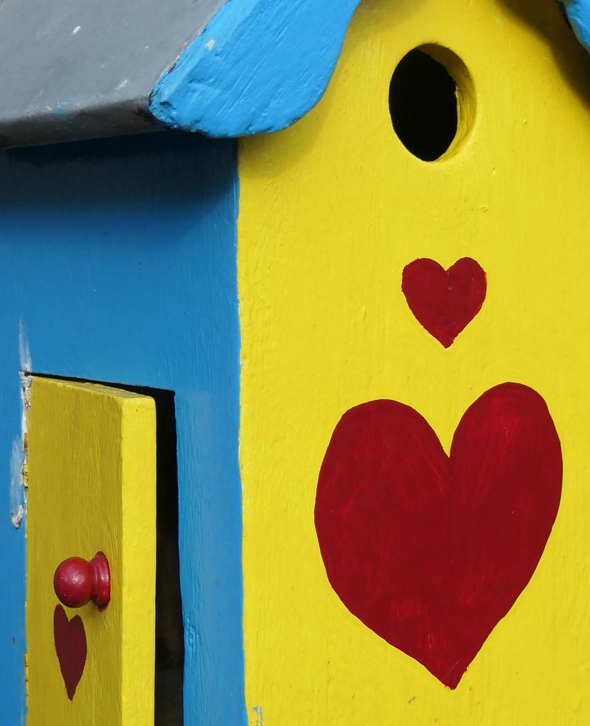 Bird house by stiggle