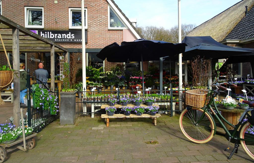 flower shop by gijsje