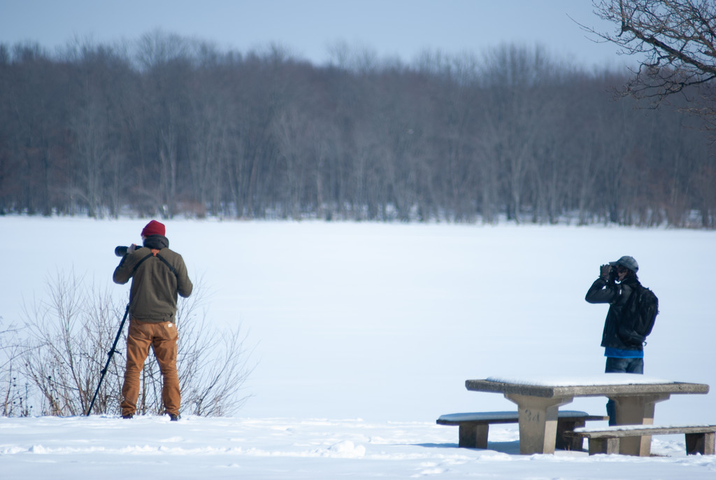 Birdwatchers Scan the Reservoir by ggshearron
