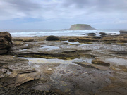 25th Feb 2021 - On the rocks
