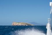 15th Feb 2021 - Schouten Island Cruise (15)