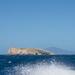 Schouten Island Cruise (9)