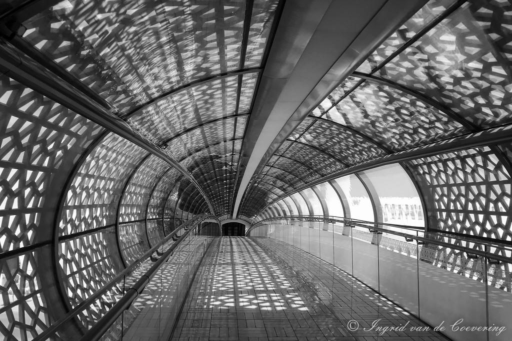 Bridge...  by ingrid01
