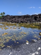 22nd Feb 2021 - This is where the Lava stopped