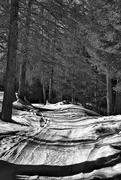 25th Feb 2021 - Snowy road