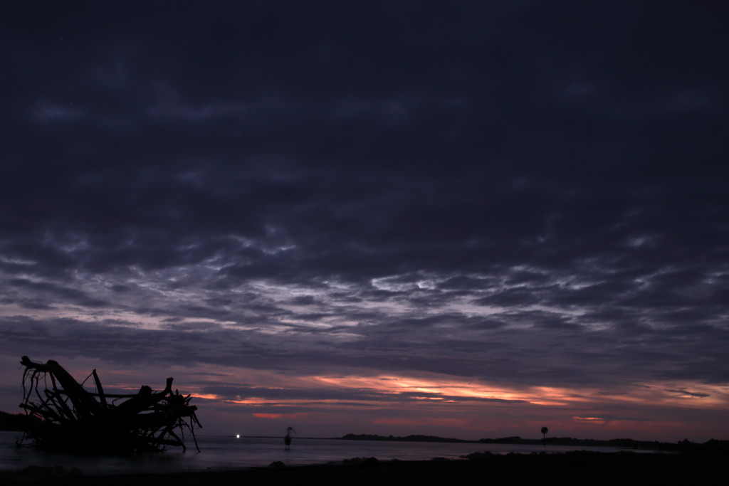 Night time shot by suez1e