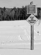 24th Feb 2021 - Snowmobile Trail