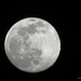 Y12 D056 Waxing Gibbous Moon