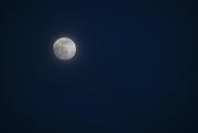 25th Feb 2021 - Evening Moon