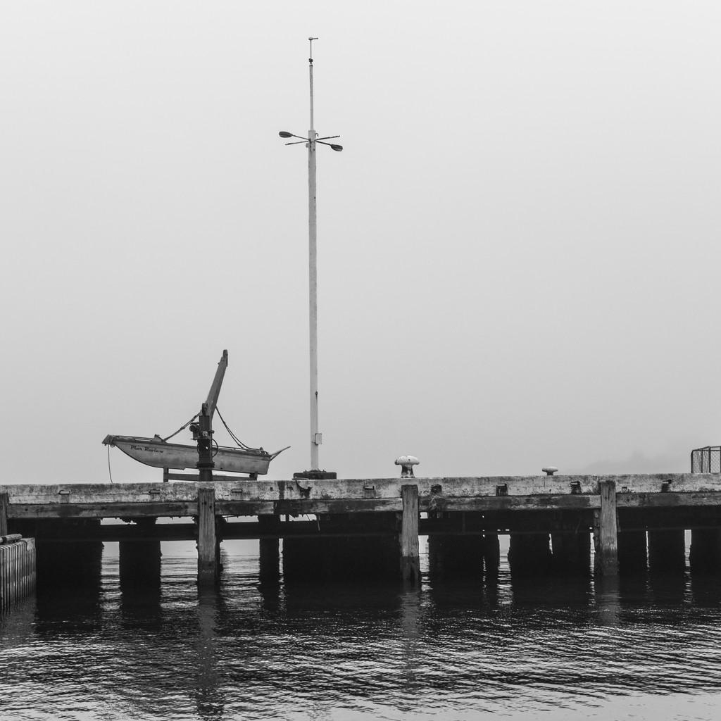 Foggy Morning by yaorenliu