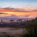 Sunrise over Te  Kauwhata