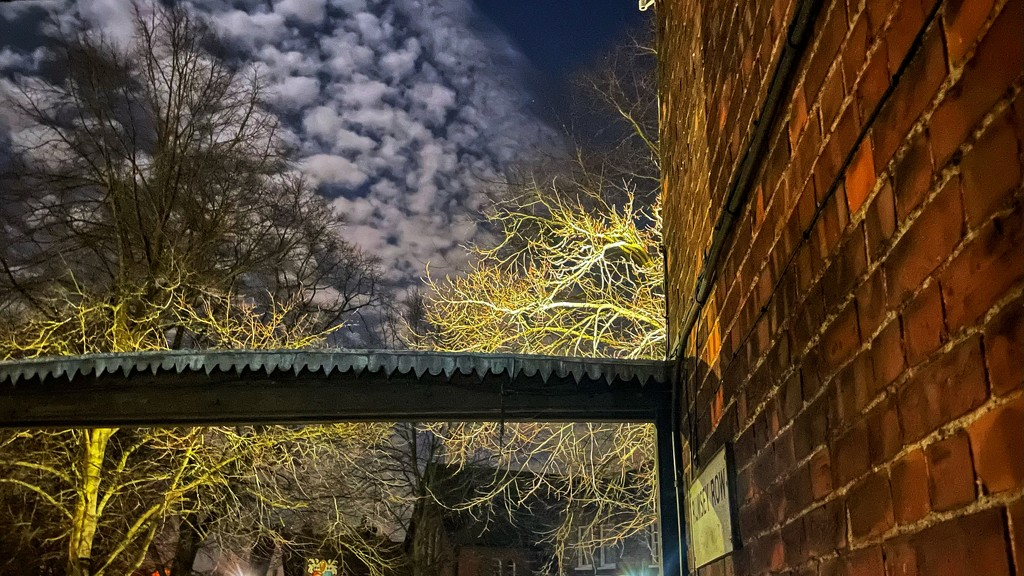 Night Alley by backspin71