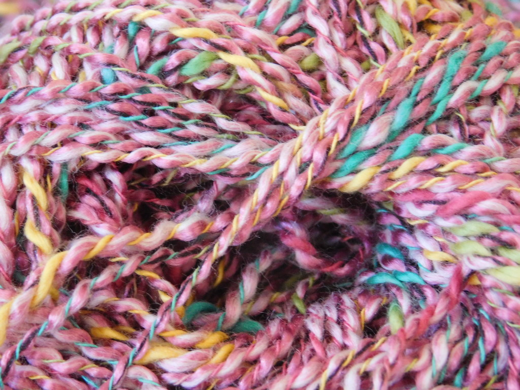 Macro fibre challenge by 365anne