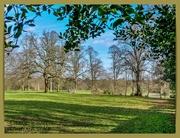 26th Feb 2021 - Winter In The Park