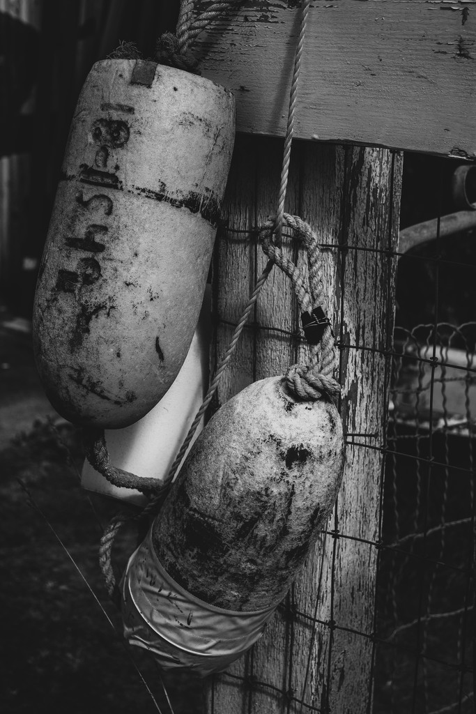 Old buoys   flash of red feb   B&W forms by theredcamera