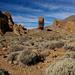 0226 - Lava Field, Mount Teide