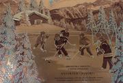 25th Feb 2021 - Canada's Favourite Sport ...