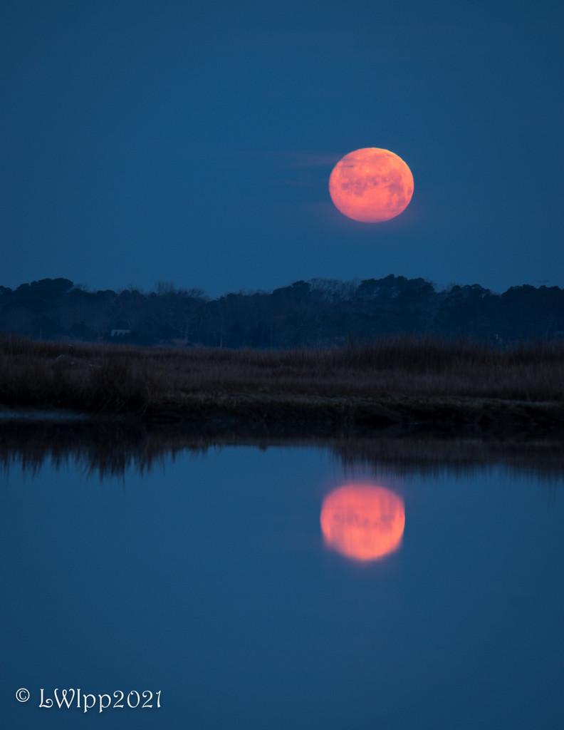 Good Night Moon  by lesip