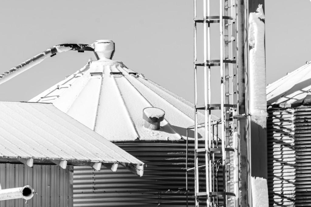 Bins Up Close by farmreporter