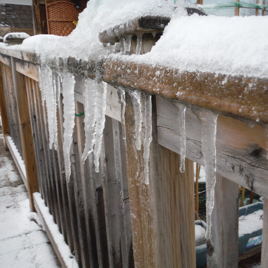 Ice #1: Icy Railing by spanishliz
