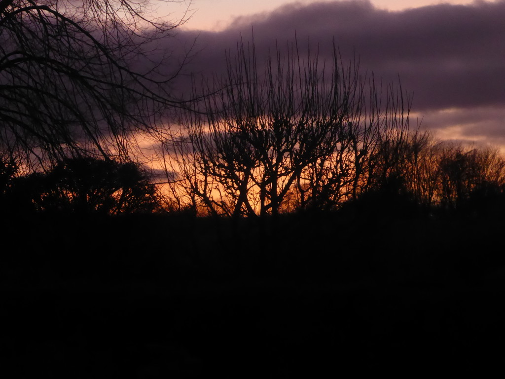 Dramatic sunset by snowy