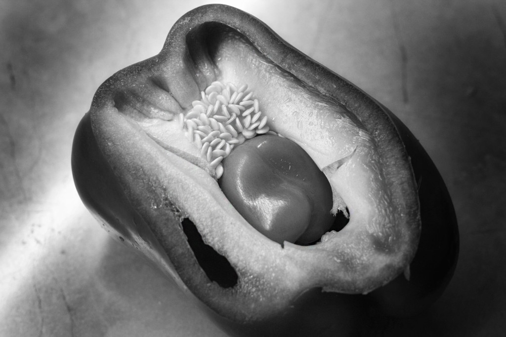 Double Pepper by jaybutterfield
