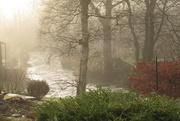 26th Feb 2021 - misty river