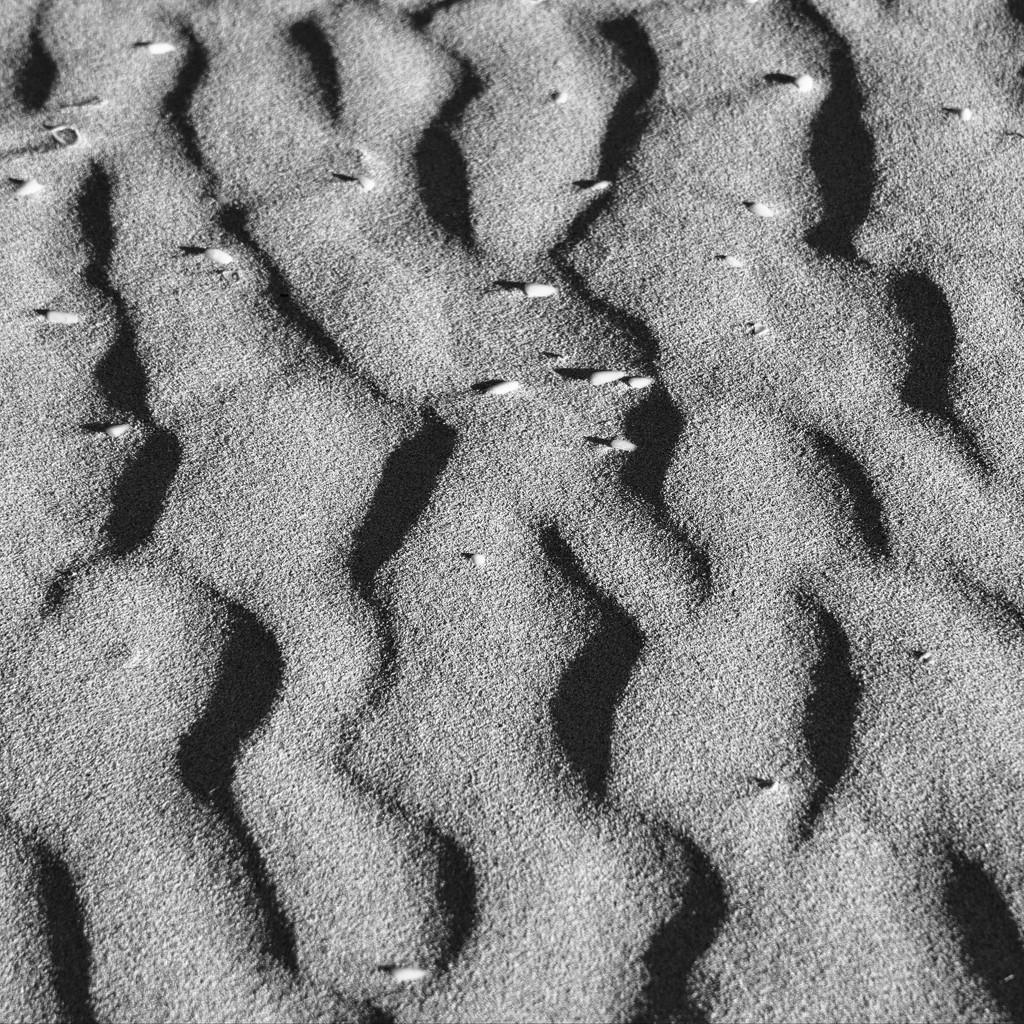 Ripples In The Sand DSC_3864 by merrelyn