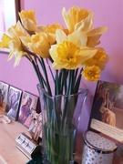 27th Feb 2021 - A vase of Daffodils