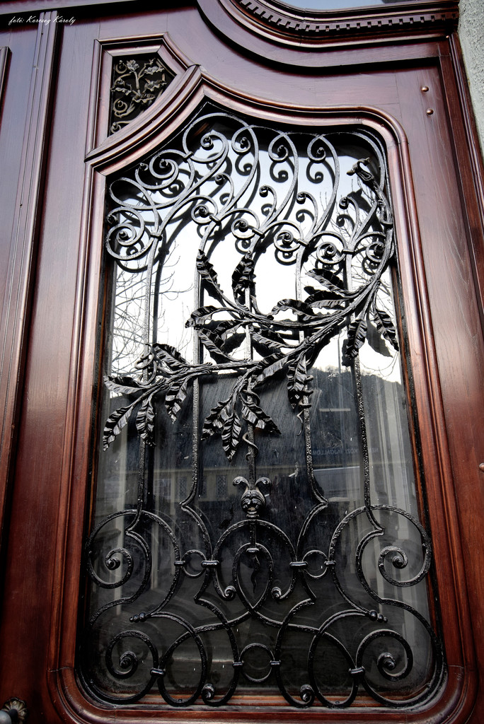 Window grille by kork