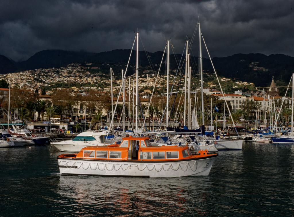 0227 - la Palma, Canary Islands by bob65