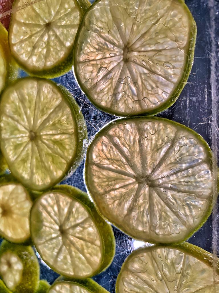 Slices.  by cocobella