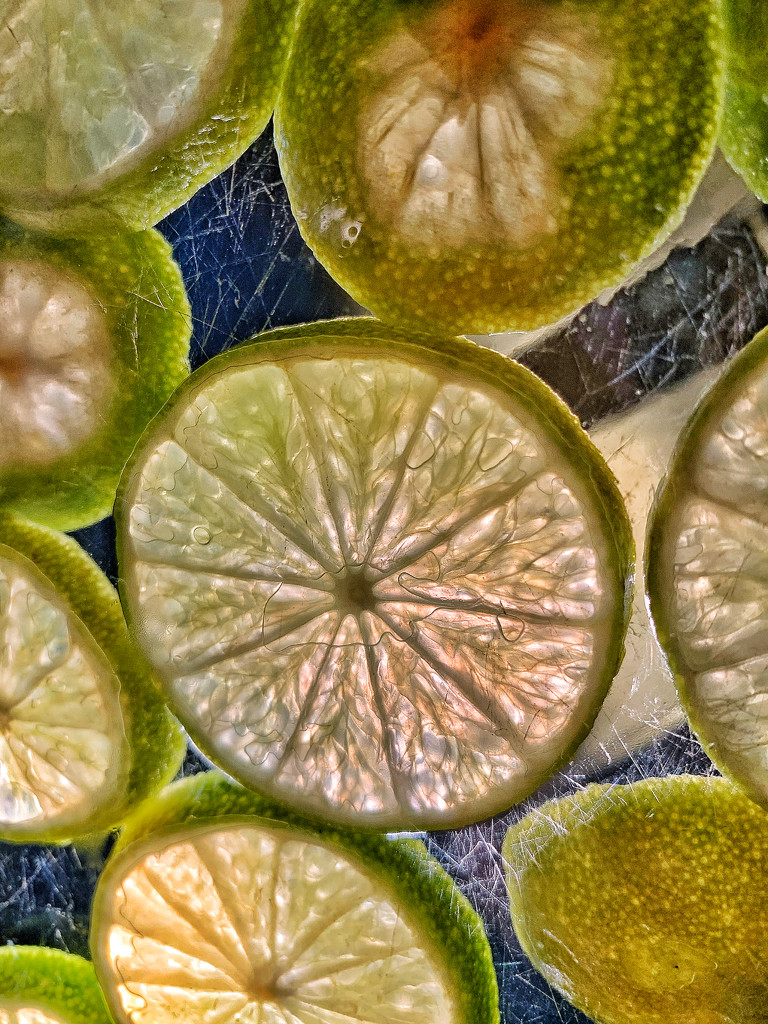 Lime.  by cocobella