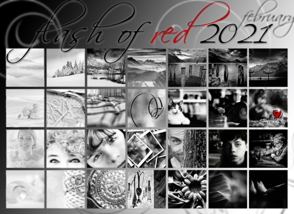 Flash of red 2021 by mona65