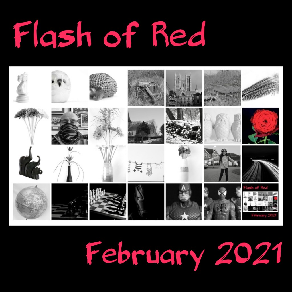 Flash of Red 2021 by phil_sandford