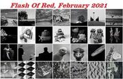 28th Feb 2021 - For 2021 Calendar