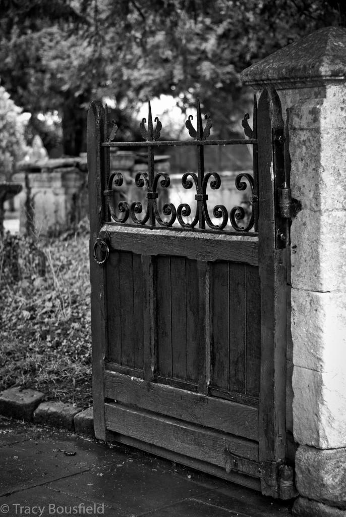 Gate by tracybeautychick