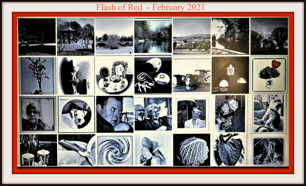 Flash of red 2021 by beryl