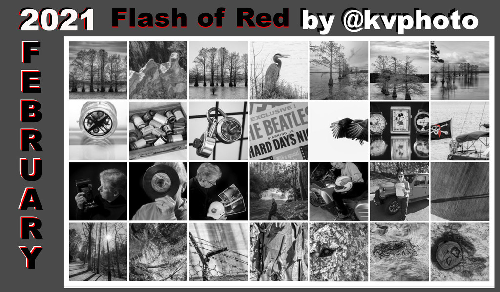 Flash of Red by kvphoto