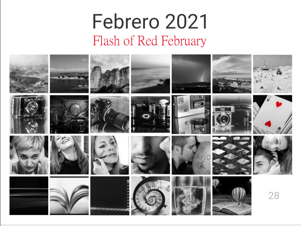 Flash of Red February by yolanda