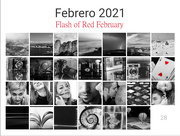 28th Feb 2021 - Flash of Red February