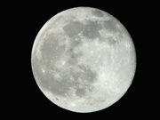 27th Feb 2021 - Full Moon