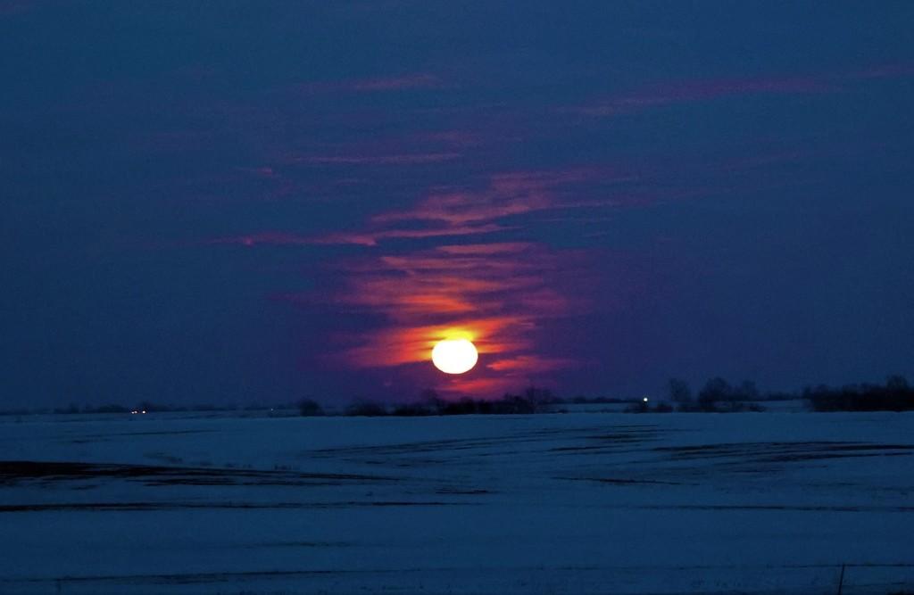 Moon Rising by lynnz