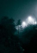 20th Feb 2021 - Night Stream